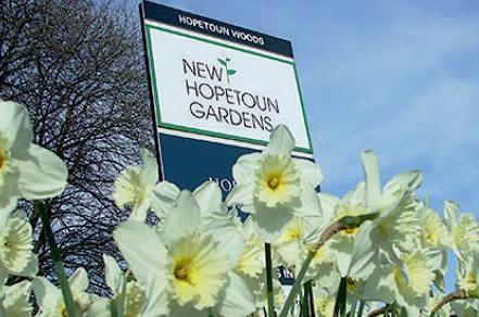 Spring at New Hopetoun Gardens