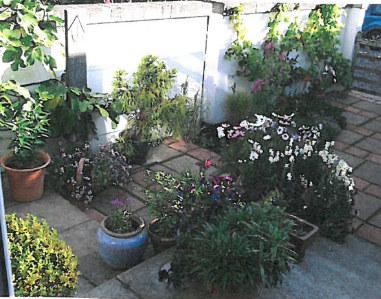 6 Spring Pot Restoration