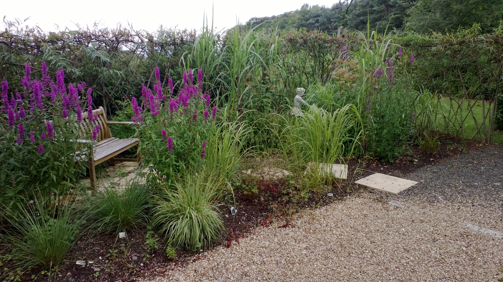 What To Grow In Small Island Bed North East Facing