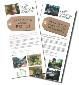 designer-plant-lists