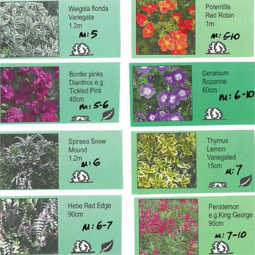 Pollinator Project Leaflets