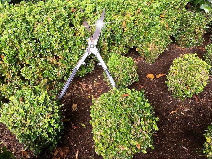 Practical Pruning